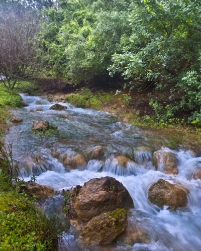 Parod River in the north of Israel